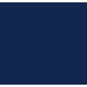 Renault Megane 2003-2008 Car Mats