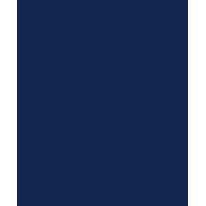Subaru Forester Manual 1997-2003 Car Mats