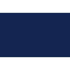 Citroen Berlingo Van 2008-2018 Van Mats