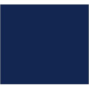 Honda Civic 2012-2017 Car Mats