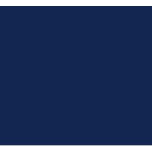 Toyota Prius 2012-2016 Car Mats