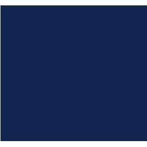 Citroen Berlingo Van 2008-2018 Van Rear Mat