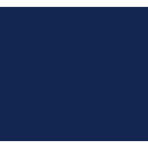 Volkswagen Beetle 2012-2019 Car Mats