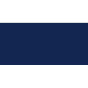 MINI Countryman 2010-2017 (R60) Boot Mat