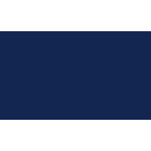 Toyota Prius 2009-2016 Boot Mat