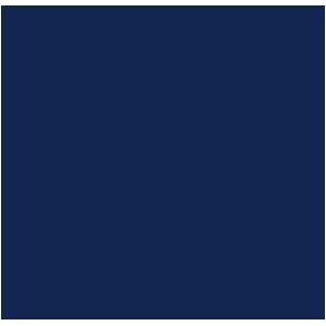 Toyota Landcruiser 2010-2013 Car Mats