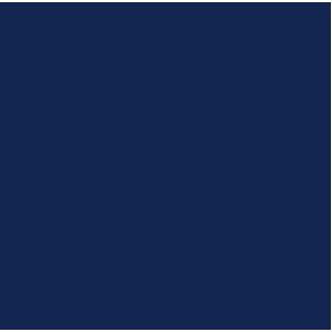 Toyota Landcruiser 2013+ Car Mats