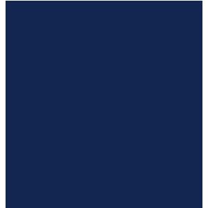 Volkswagen Tiguan 2016+ Car Mats