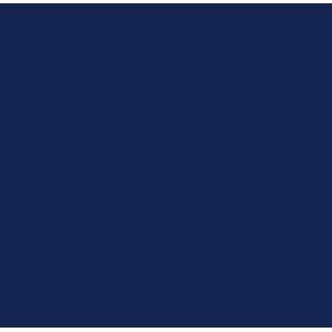 Ford Edge 2015+ Car Mats