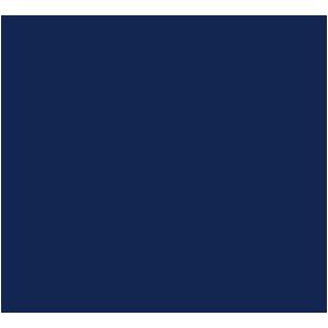 Seat Ateca 2016+ Car Mats