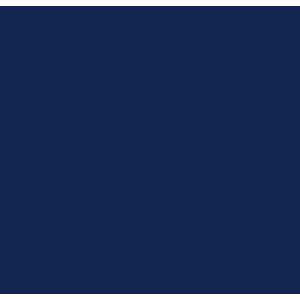 Seat Arona 2017+ Car Mats