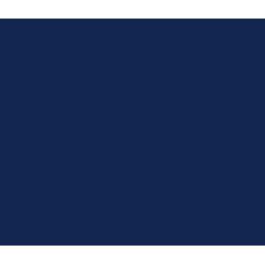 DS Automobiles DS7 2018+ Car Mats